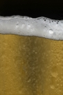 iPhone live: iBeer from Apr 8 23:19:36