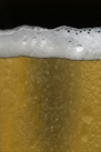 iPhone live: iBeer from Apr 12 2:03:09