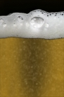 iPhone live: iBeer from Apr 14 21:12:41