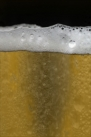 iPhone live: iBeer from Apr 20 14:47:30