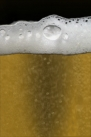 iPhone live: iBeer from Apr 27 20:52:09