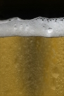 iPhone live: iBeer from Apr 28 0:52:14