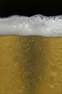 iPhone live: iBeer from Jun 6 21:38:42
