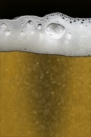 iPhone live: iBeer from Jun 8 19:53:52